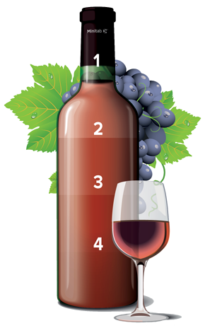 Ensure the Same Wine Every Time - wine bottle graphic v2