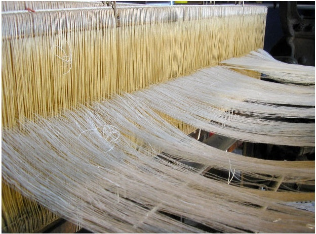 Minitab helped textile producers create the perfect mix of wrinkle-free cotton fabric. Here a textile loom is at work making thread from harvested cotton that will be used to make cotton clothing.